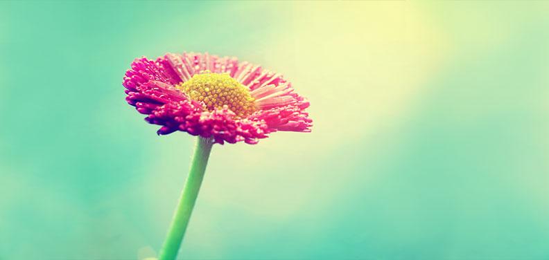 Glücklich sein – nur wie?