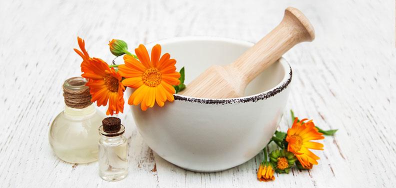 7 wirksame Heilpflanzen für die Haut
