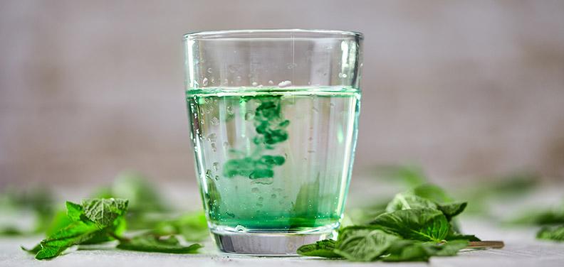 So gesund ist Chlorophyll